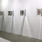 Exhibition scenography and curating